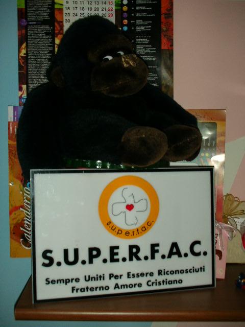 Mascot & Logo